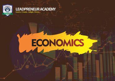 economics study 400level