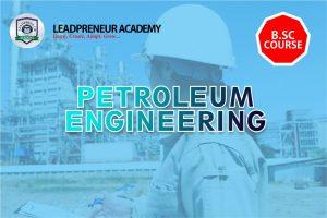PETROLEUM ENGINEERING BSC