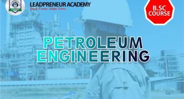 PETROLEUM ENGINEERING BSC